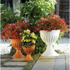 Vaso calice alba bama cm 43 per piante piantine